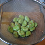 how to boil broad bean
